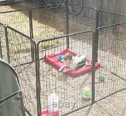Dog Large Playpen 32 Inch Tall Exercise Pen 8 Panel Folding Kennel with Door New